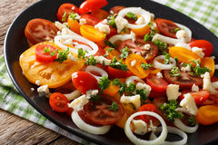 Salad of colorful tomatoes, onion and blue cheese close-up. hori Royalty Free Stock Photos