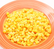 Salad of corn Stock Images