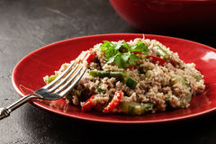 Salad couscous with tuna, bell pepper, cucumber, red onion and green beans Royalty Free Stock Photography