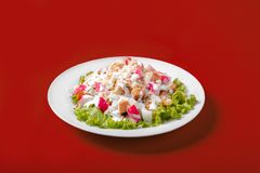 Salad with crab meat for the menu. Salad with crab meat, breadcrumbs on a monophonic red background. It is decorated with lettuce leaves. Side view Royalty Free Stock Image