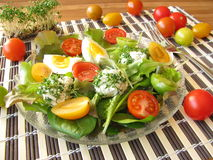 Salad with cream cheese balls Royalty Free Stock Image