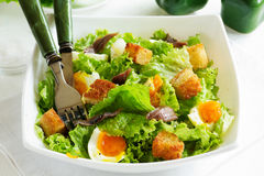 Salad with croutons Stock Photos