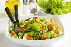 Salad with croutons, Royalty Free Stock Images