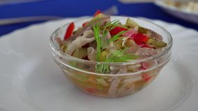 Salad of cucumber beef meat and pepper snack stock video
