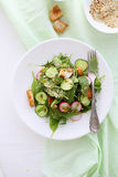 Salad with cucumber and croutons royalty free stock images