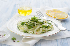 Salad with cucumber, fennel, green onions and mint Royalty Free Stock Images