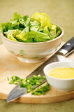 Salad with cucumber and lettuce Stock Image