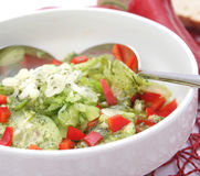 Salad of cucumber with paprika Stock Image