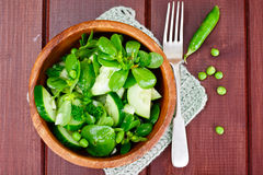 Salad with Cucumber, Purslane and Green Peas on Dark Disks Stock Images