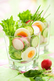 Salad with cucumber,radish and egg Royalty Free Stock Images