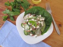 Salad with cucumber and redish. Royalty Free Stock Photos