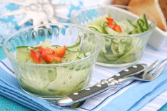 A salad of cucumbers Royalty Free Stock Photo