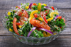 Salad with curly kale Royalty Free Stock Images
