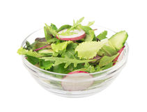Salad from cut cucumbers, garden radish and Royalty Free Stock Images
