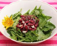 Salad of dandelion and beans. A fresh salad of dandelion and beans stock images