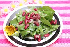 Salad of dandelion and beans. A salad of dandelion with red beans stock photos