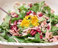Salad of dandelion and beans. A salad of dandelion with red beans and sausage stock photography
