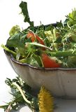 Salad with dandelion flower Stock Photo