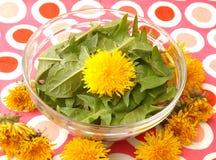 Salad of dandelion Royalty Free Stock Photos