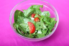 Salad of dandelion Stock Photography