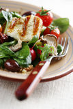 Salad de luxe Royalty Free Stock Images