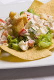 Salad decorated with nachos Royalty Free Stock Image