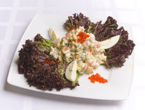Salad Decorated With Leaves Stock Image