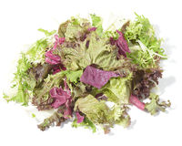 Salad diet Stock Photography