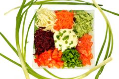 Salad of different kinds vegetables with sour cream Stock Image