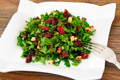 Salad with Dill, Parsley, Cilantro, Walnuts. And Dried Cherries Studio Photo royalty free stock photos