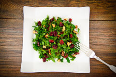 Salad with Dill, Parsley, Cilantro, Walnuts. And Dried Cherries Studio Photo Royalty Free Stock Images