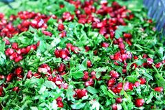 Salad, dill, parsley, pomegranate. A cold dish of various mixtures of raw or cooked vegetables, usually seasoned with oil, vinegar, or other dressing and royalty free stock photos