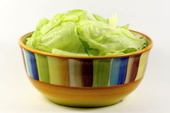 Salad in a dish Royalty Free Stock Image