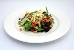 Salad dish. A gourmet salad dish at a restaurant royalty free stock photo