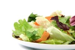 Salad dish Stock Photos