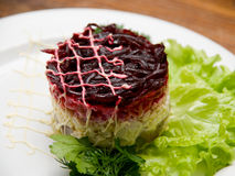 Salad dish Royalty Free Stock Photo