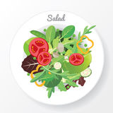 Salad dish. Fresh vegetable and green leaf salad dish Stock Photography
