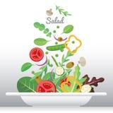Salad dish. Fresh vegetable and green leaf salad dish Stock Image