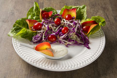 Salad dish with grape tomatoes, lettuce and red cabbage and sauc Royalty Free Stock Image