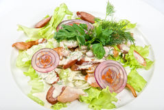 Salad dish with sausage Royalty Free Stock Photography