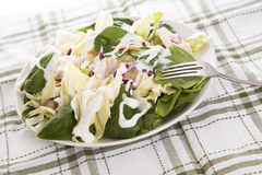 Salad with dressing Royalty Free Stock Photos