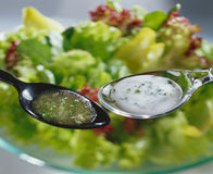Salad dressings Stock Image