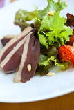 Salad with duck breast Royalty Free Stock Photography