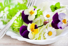 Salad with eatable flowers Royalty Free Stock Images