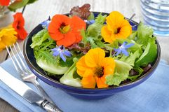 Salad with edible flowers nasturtium, borage. Royalty Free Stock Photo