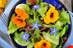 Salad with edible flowers nasturtium, borage. Royalty Free Stock Image