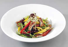 Salad with eel Stock Photography
