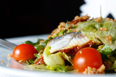 Salad with eel and couscous Royalty Free Stock Images