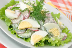 Salad with egg Stock Image