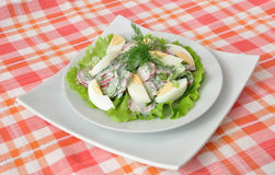 Salad with egg Royalty Free Stock Images